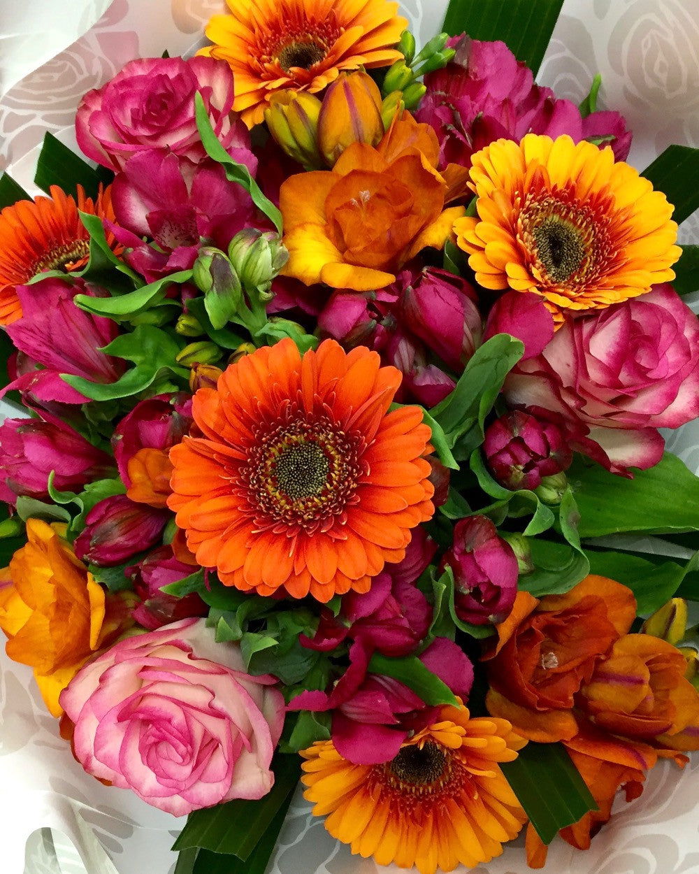 Spring Flowers In Winter For Delivery In Wellington New Zealand