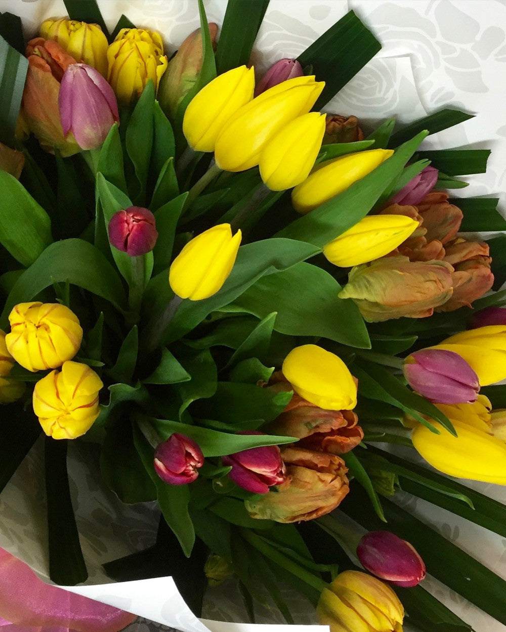 Send Beautiful Spring Flowers Now In Winter To Wellington Nz