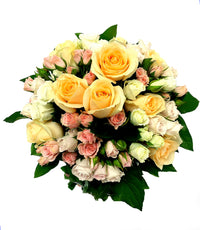Roses in Wellington New Zealand Central CBD City Scent Flowers Lambton Quay Florists Kilbirnie Miramar