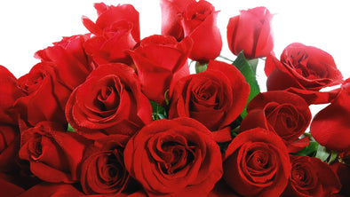 Why use Flower Shop Florist this Valentine's Day?