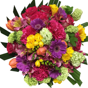 Colourful Bright Mix Flowers - Flowers Wellington NZ - Flower Shop Florist Wellington NZ