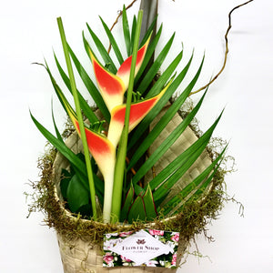 Rainbow Heliconia Tropical Flower flax wrap delivery in Wellington New Zealand - www.flowershopflorist.nz
