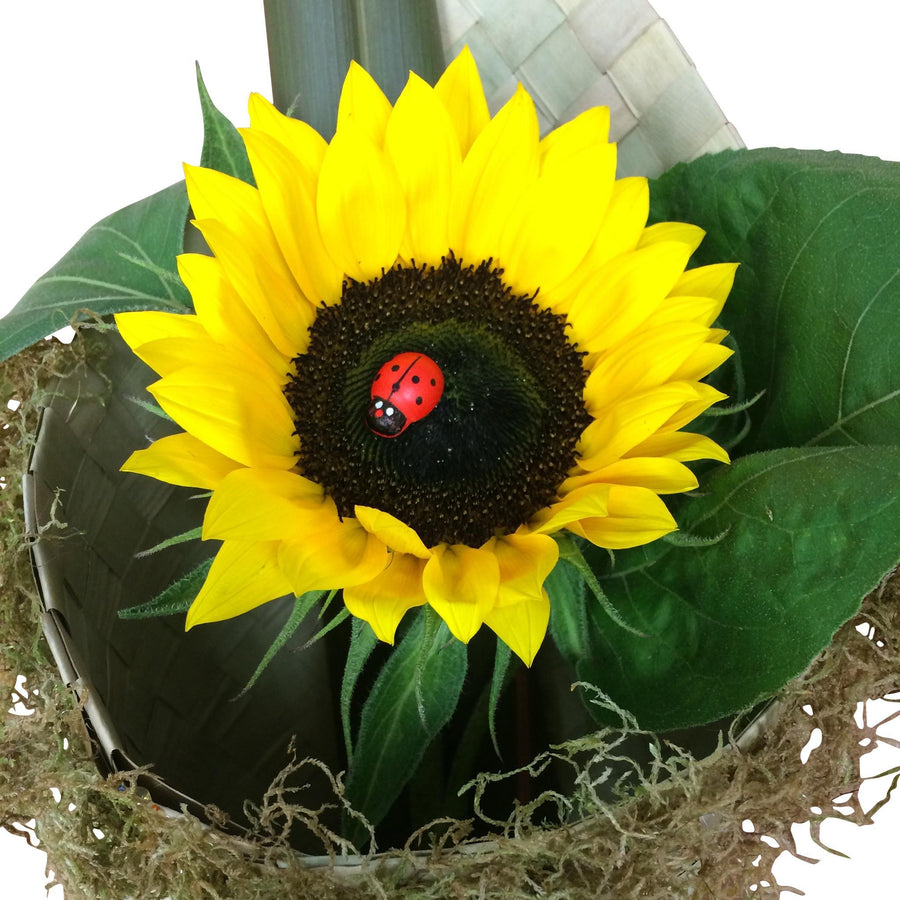 Sunflowers in Flax Wrap - Sunflowers Flower - Flower Shop Florist Wellington NZ