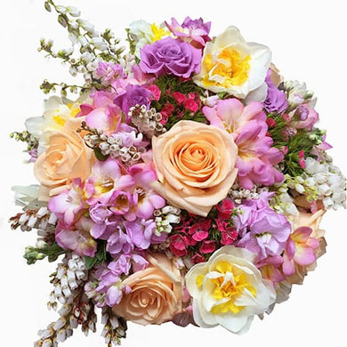 Spring mix flower posy - flower delivery Wellington - flowers by florists in Wellington