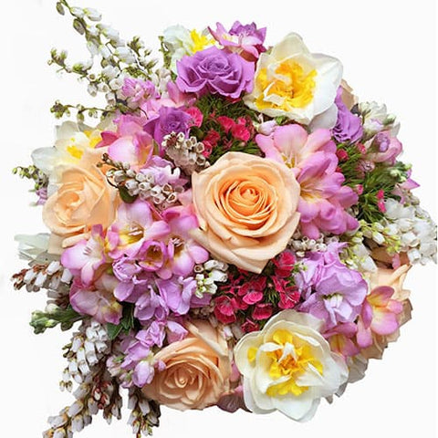 Spring Flowers, Daffodils, Freesias, roses, spray roses, sweet William, Wellington New Zealand Flower Delivery www.flowershopflorist.nz