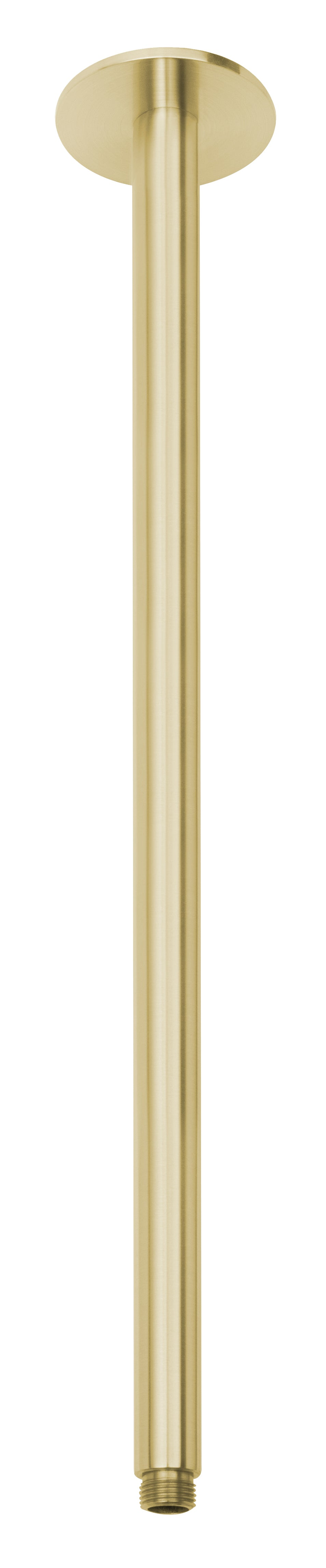 Vivid Ceiling Arm Only 450mm (Brushed Gold)