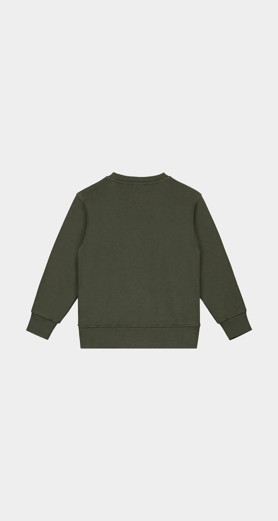 Daily Paper - Forest Green Kids Alias Sweater - Rear