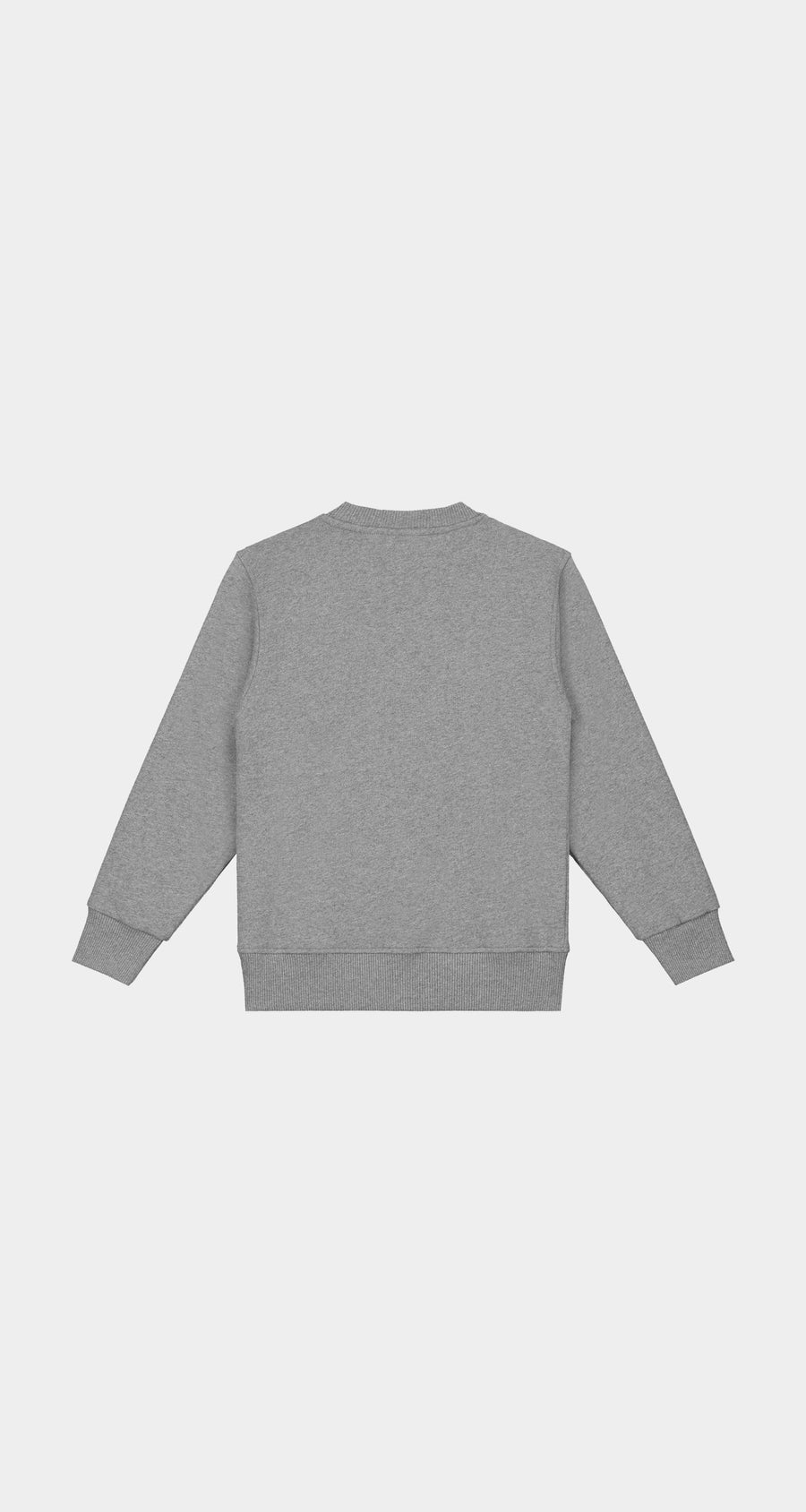 Daily Paper - Grey Kids Alias Sweater NEW - Rear