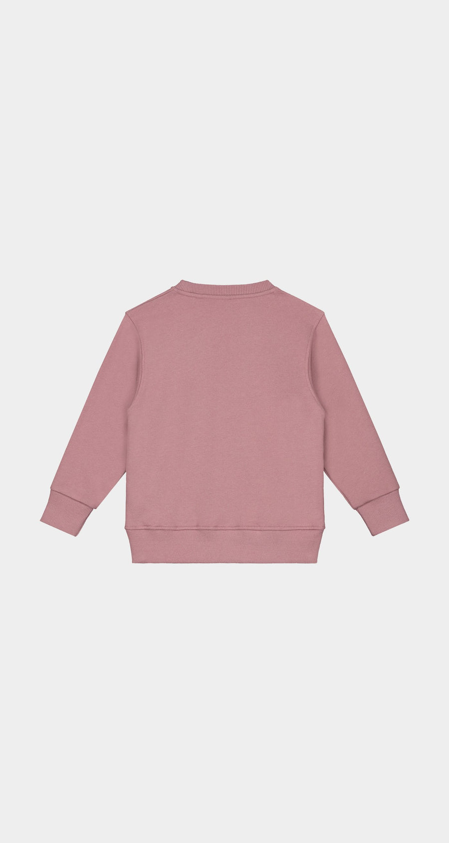 Daily Paper - Mauve Pink Kids Alias Sweater - Rear