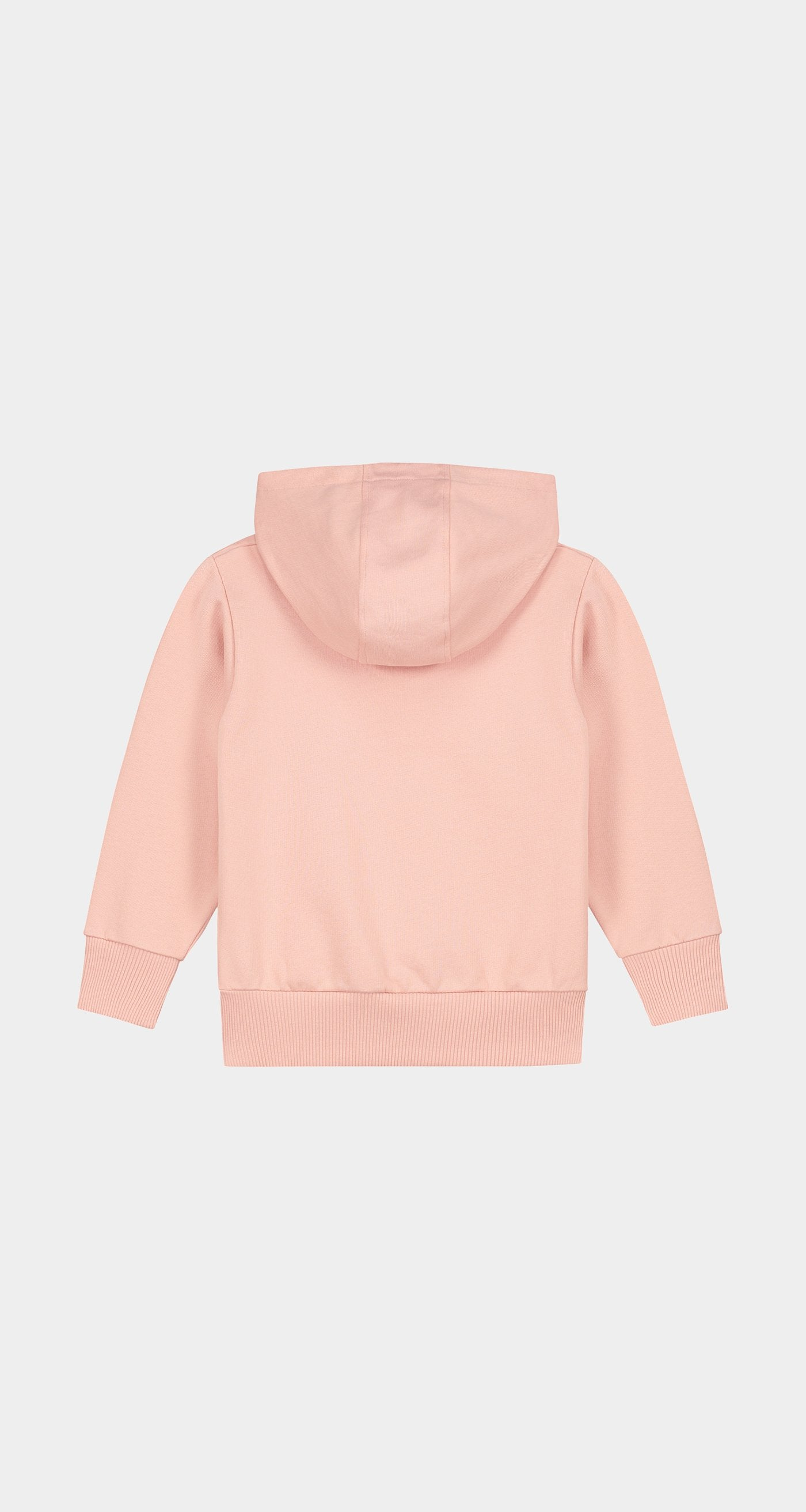 Daily Paper - Misty Rose Kids Alias Hoody Rear