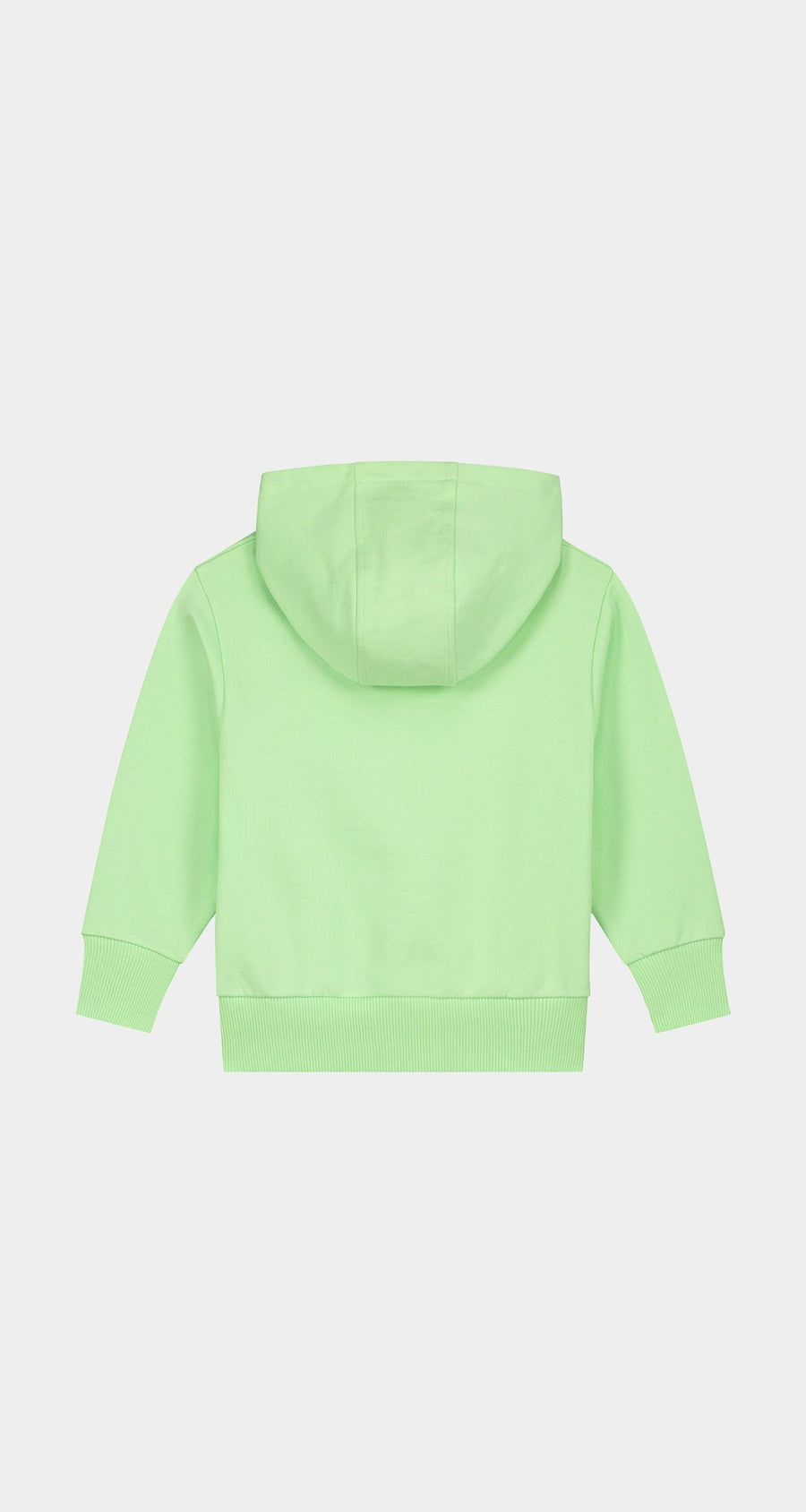 Daily Paper - Patina Green Kids Alias Hoody Rear