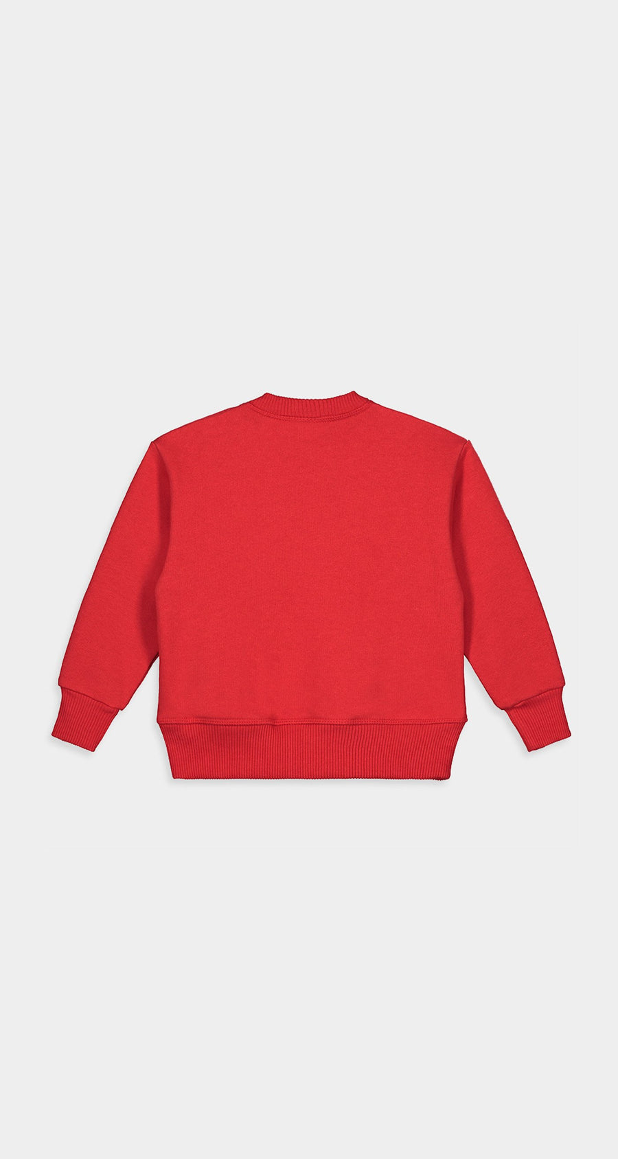 Daily Paper - Red Kids Alias Sweater Rear