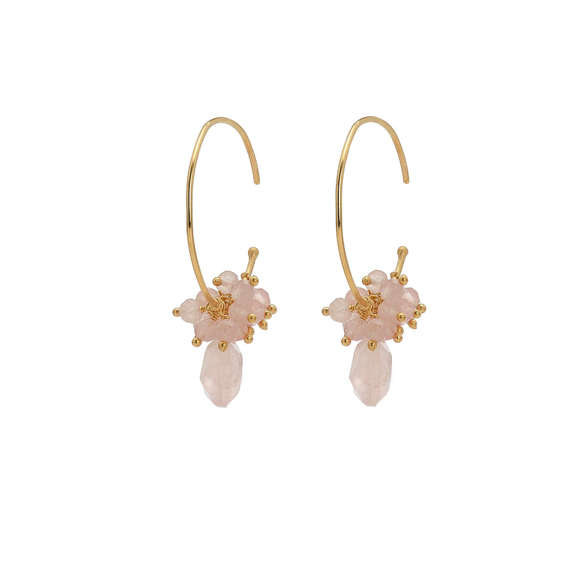 Earrings -  Rose Quartz Briolette Hoops