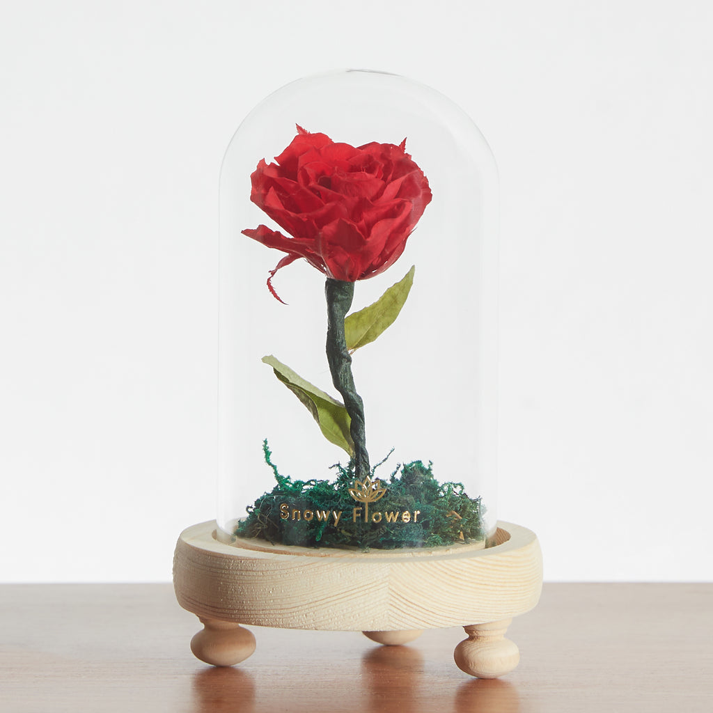 Classic Mini Rose Glass Dome