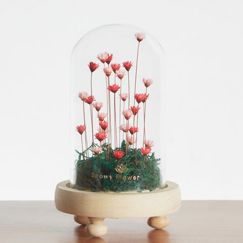 Classic Mini Snowy Flower Dome