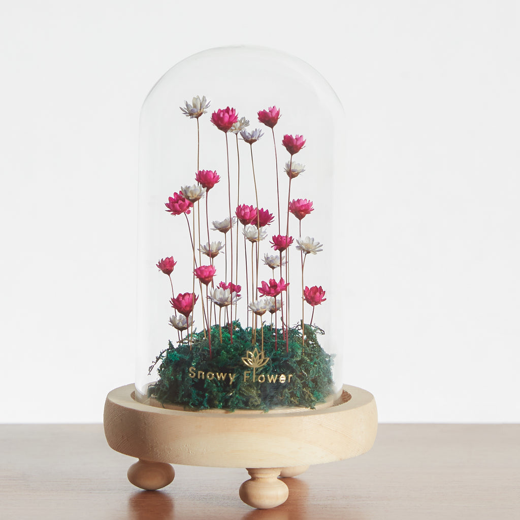 Classic Mini Snowy Flower Dome (sold out)