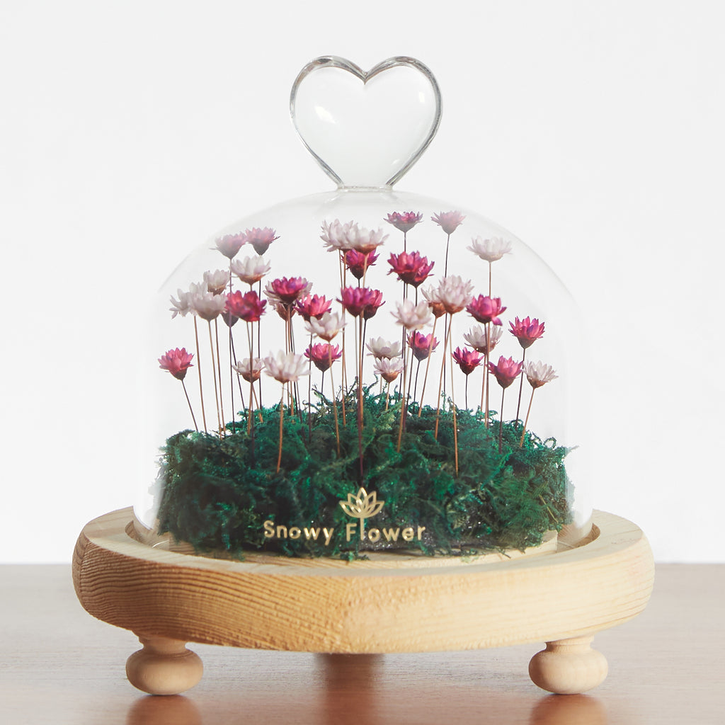 Heart Dome Snowy Flower