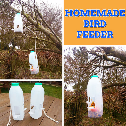 How to make a DIY bird feeder – Miles Kelly