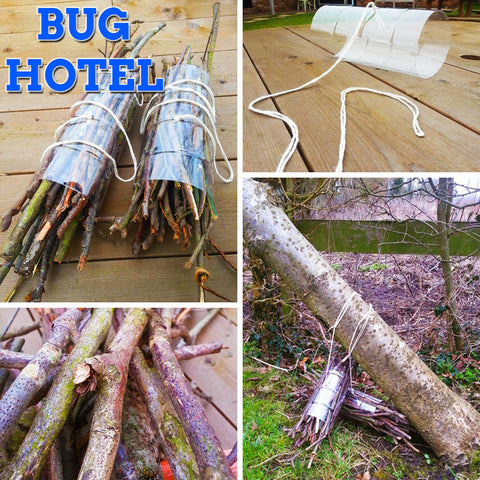 How to make a bug hotel – Miles Kelly