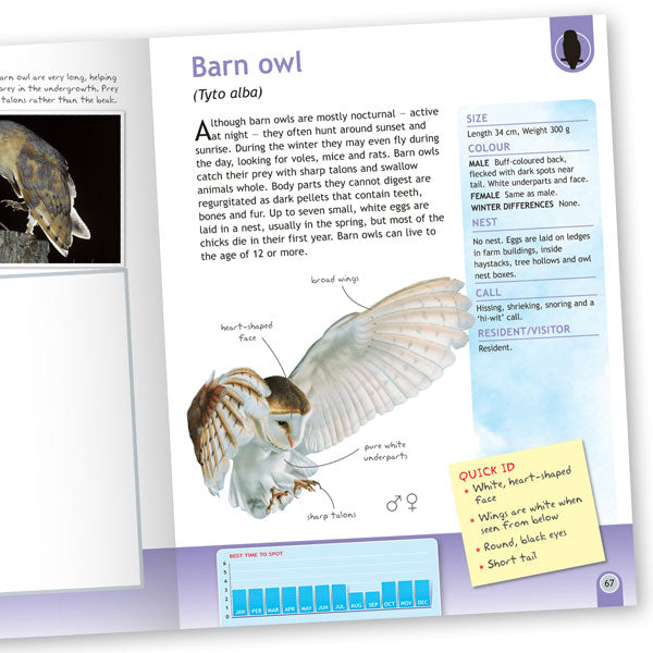 British Wildlife Handbooks Box Set
