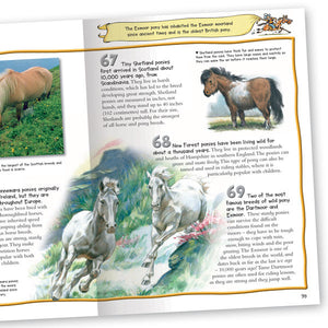 100 Facts Horses and Ponies