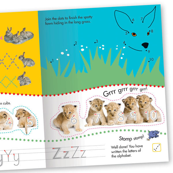 Get Set Go Writing: Animal Friends