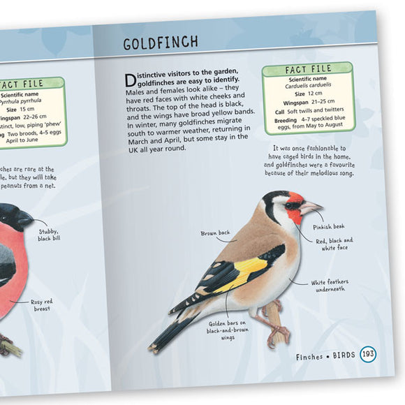 Encyclopedia of British Wildlife