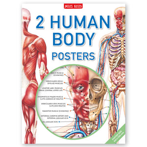 Human Body Poster Pack