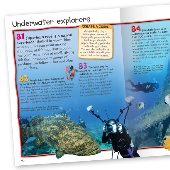 Pocket Edition 100 Facts Coral Reef