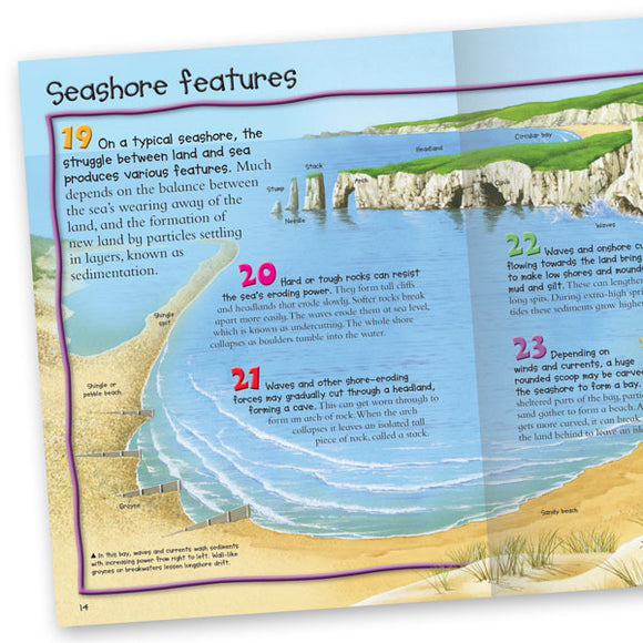Pocket Edition 100 Facts Seashore