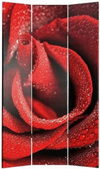 3 Panel Red Room Divider