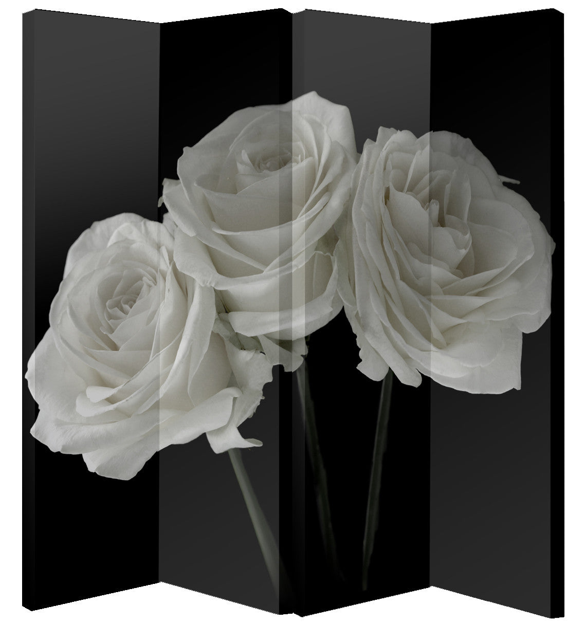 Black & White Rose Room Divider Screen