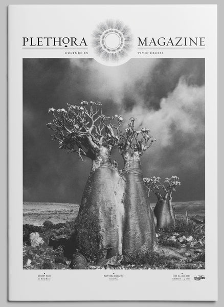 Plethora Issue No.3