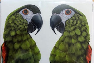 Two Green Parrots Card