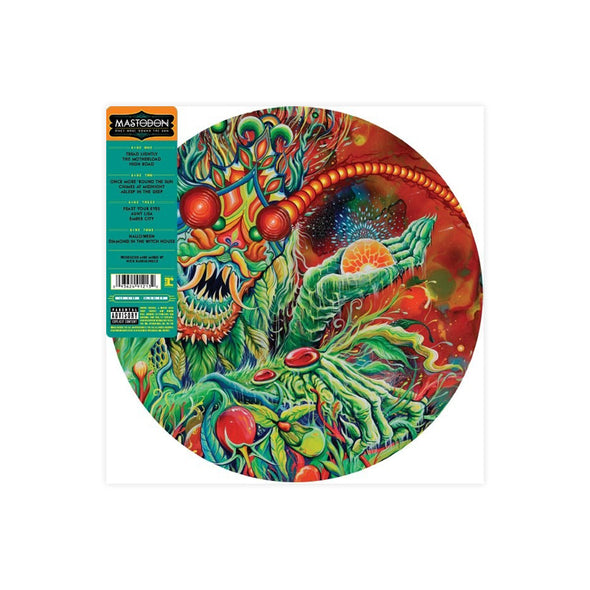 Once More 'Round the Sun 2LP (Picture Disc Vinyl)
