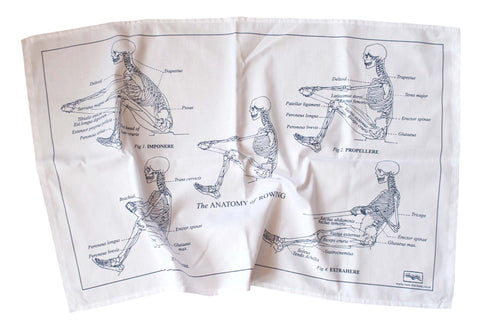 Anatomy of Rowing Tea Towel