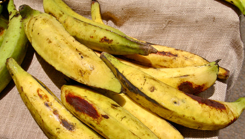 plantains, weight loss, diet plan, high cholesterol