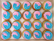 Gender Reveal Mini Cupcakes (Box of 20) - Cuppacakes - Singapore's Very Own Cupcakes Shop