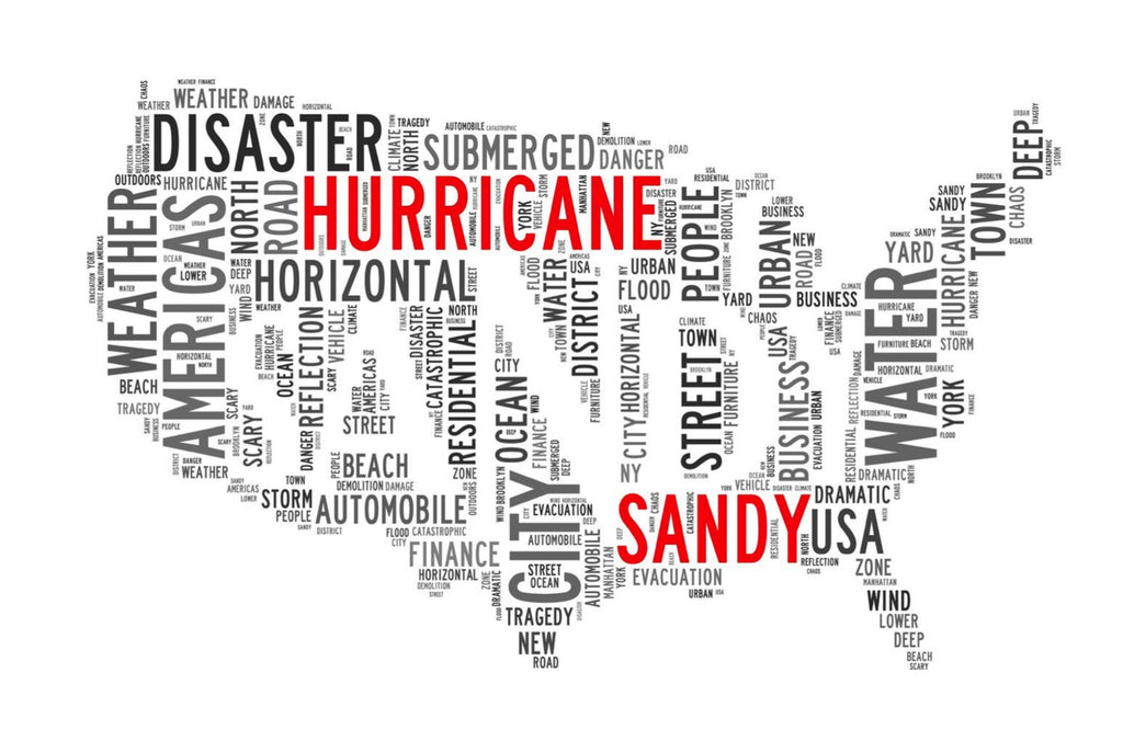 Everything I Learned From Hurricane Sandy | BY FRANK OSTMANN