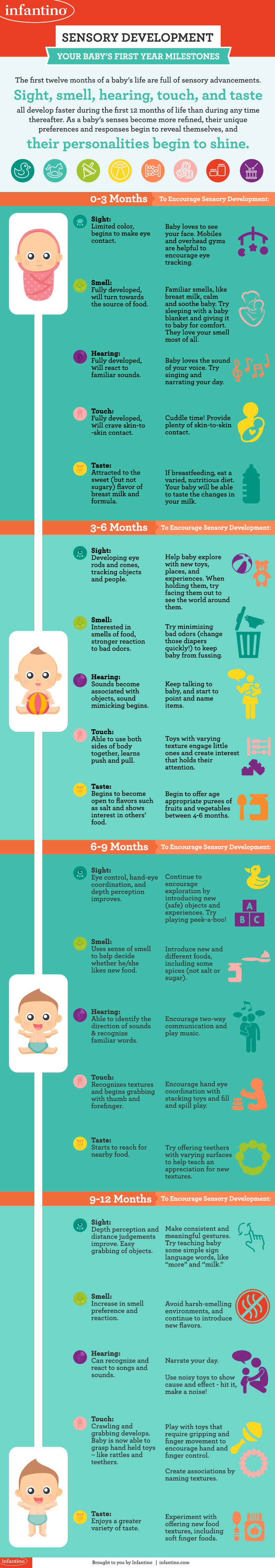 Sensory Development - Your Baby's First Year Milestones [Infographic]