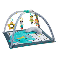 4-in-1 Milestones & Memories Twist & Fold Gym™