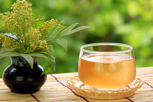 Refreshing Japanese Tea for Summer