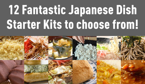 12 Fantastic Japanese Dish Starter Kits to choose from