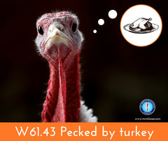 Pecked by turkey - W61.43 ICD-10