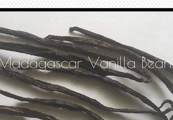 L's Vanilla Extract 1oz. - L's Naturals | Bath & Body Boutique