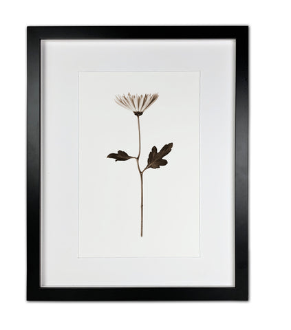Mum Black & White Modern Framed Photograph