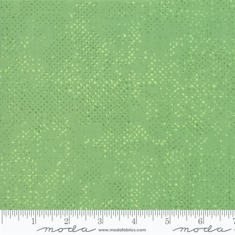Moda Spotted 1660 64 Celadon Dotted Basic Solid By The Yard