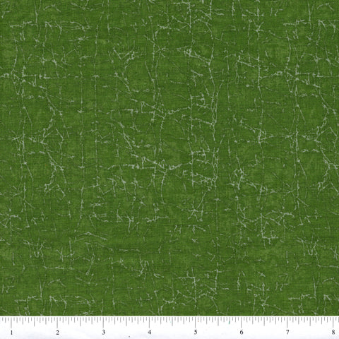 RJR Fabrics Adventures 1683 6 Cracks On Green By The Yard