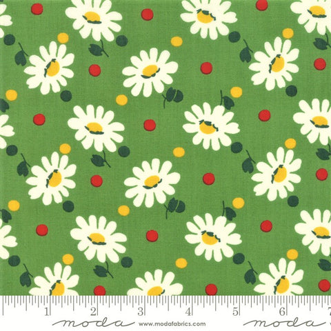 Moda Bubble Pop 21761 17 Green Big Daisy By The Yard