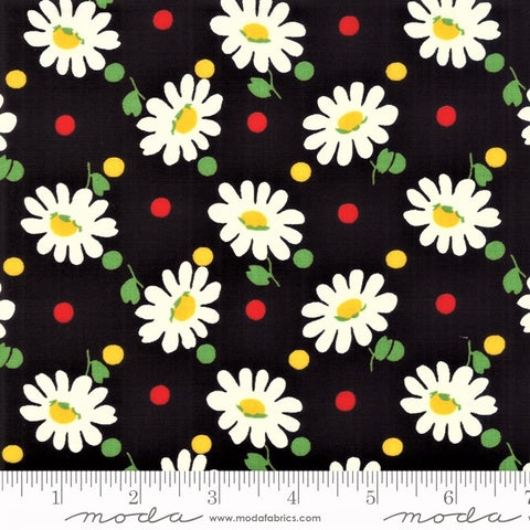 Moda Bubble Pop 21761 21 Black Big Daisy By The Yard
